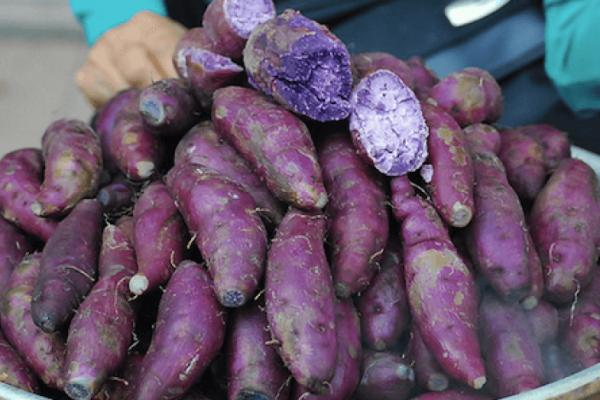patate douce violette bienfaits