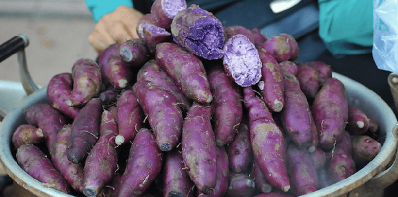 patate douce violette bienfaits