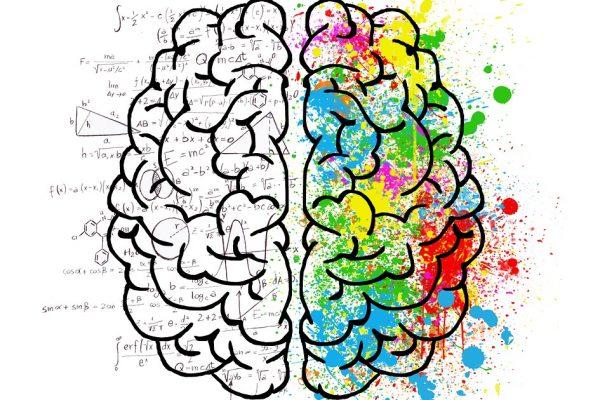 cerveau embrumé