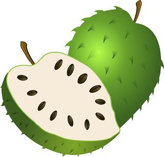 corossol guanabana